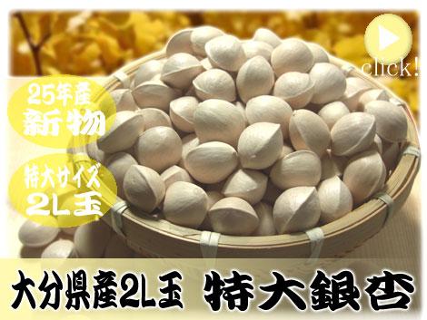 豆専門店松葉屋の「大分県 特大粒 銀杏」